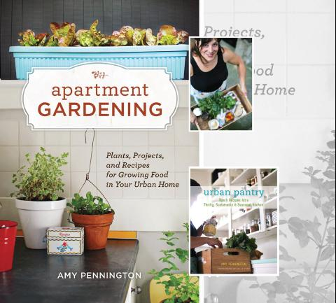 Amy Pennington Book